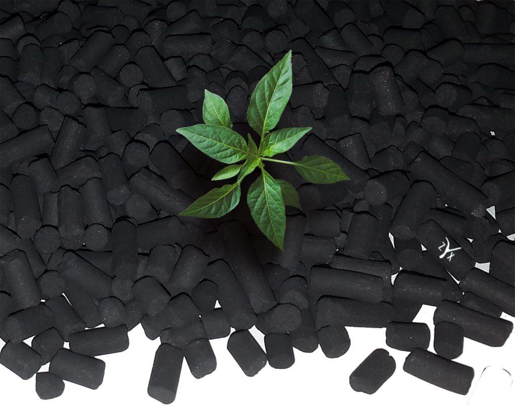 filtro a carbone attivo ecologico
