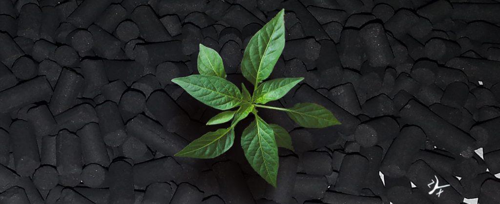 promozione carboni attivi autunno 2017 zyx